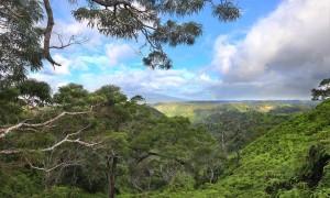Rainbow on Waiau Ridge